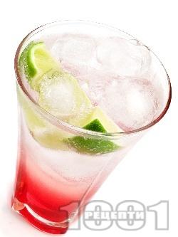Коктейл Кайсиева прохлада (Apricot Cooler) - снимка на рецептата